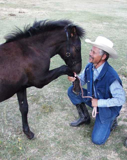 Manfred and the new foal Timujin