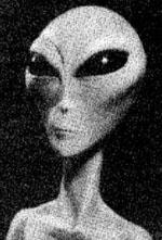 The infamous grey alien