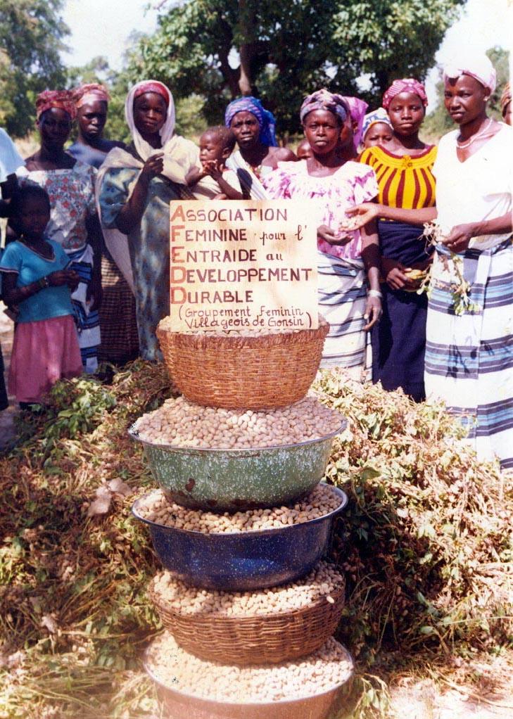 Association Feminine pour l Entraide au Developpement Durable AFFED