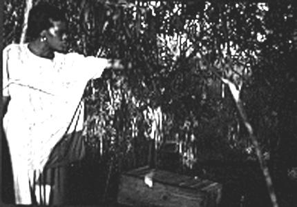 Tecla David bee keeper Mozambique
