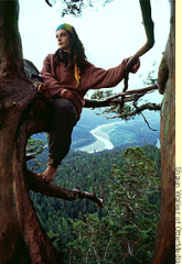 Julia Hill and Luna the redwood tree