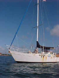 Mollie Milar an ordinary boat