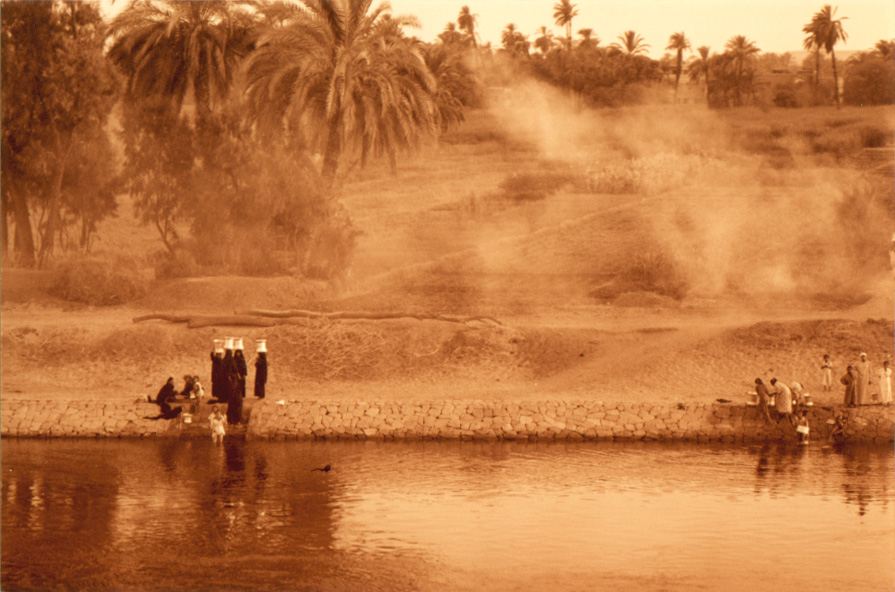 The edge of the Nile River