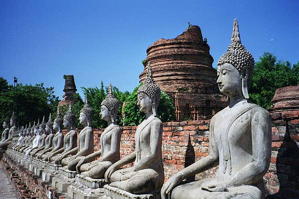 A row of seated Buddhas