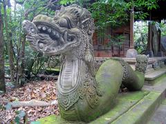 Scotts adventure in Bali 09