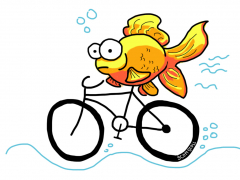 A woman needs a man like a fish needs a bicycle