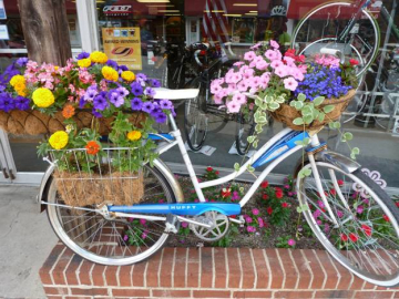 Spirit of Adventure bicycle greeting cards. A Huffy bicycle full of baskets of flowers.