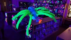 glow-show-spider
