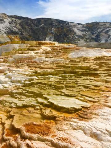 Mammoth Hot Springs Terraces, Yellowstone National Park