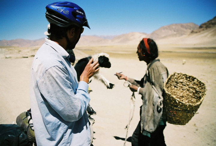 A Tibetan shepherd walks away with a pen, while Edwin is left holding a cute lamb. They are surrounded by barren hills with little food for grazing.