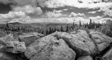 Dolly Sods Wilderness panorama. Flowing boulders in the foreground followed by rows of pine trees, mountains and clouds.