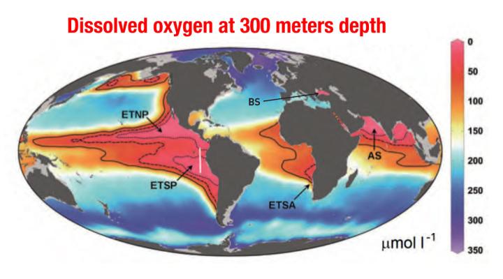 Ocean oxygen levels at 300 meters depth
