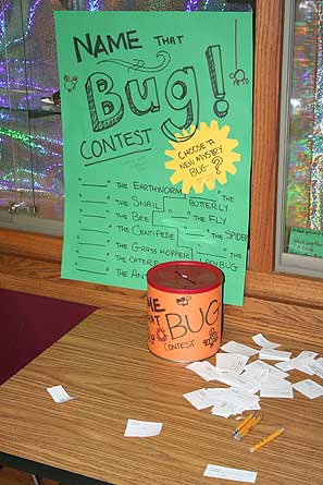 A colorful sign with bugs and a voting box and ballots.