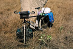 Fully-loaded bicycle and a termite hill